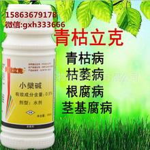沃柑黄化防治农药青枯立克灌根图片