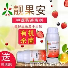 桃树穿孔病专用最新农药图片