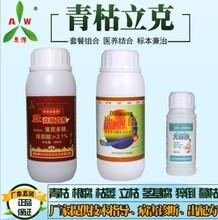 圣女果青枯病专用植物源杀菌剂青枯立克图片
