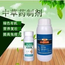 花椒树流胶病治疗农药一件15瓶装溃腐灵图片