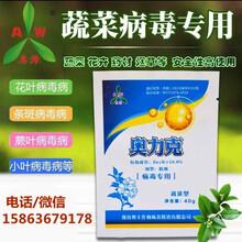 辣椒條斑病毒防治使用方法蔬菜病毒專用圖片