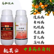 靚果安四霉素水劑農藥防治獼猴桃褐斑病潰瘍病圖片