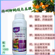 柑橘树杀菌剂叶面肥青苔农药搭配靓果安大蒜油锌硼钾钙镁氨基酸叶面肥图片