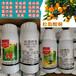 登记细菌性病害溃疡病柑橘烟草野火病的产品松脂酸铜