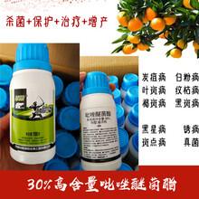 枇杷圓斑病炭疽病殺菌劑新產品靚果安吡唑醚菌酯圖片