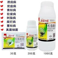 松脂酸銅農藥,芒果角斑病芒果農藥,芒果角斑病,芒果花腐病圖片