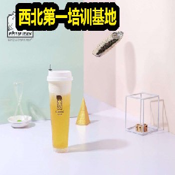 饮品特调果汁培训冰沙发酵茶养乐多做法学习