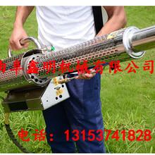 农用药雾机高射程喷药机果园汽油脉冲动力烟雾机图片