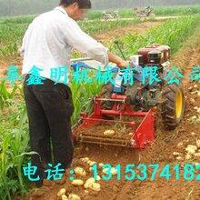 贵阳双行挖马铃薯收获机图片不破皮薯类挖掘机地瓜收获机工作效率图片