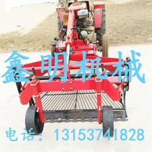 新疆大蒜收割机振动筛蒜头收获机价格独蒜前置式收获机现货供应图片
