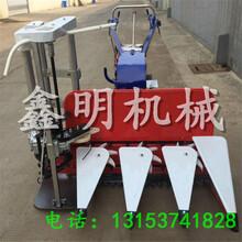 黑龙江芦苇割捆机粮食秸秆收割打捆机自动收割扎捆机麦稻收割机图片