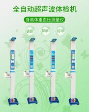 一站式自助身高體重血壓脈搏測量儀超聲波體檢機圖片
