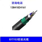 厂家销售GYTA/GYTS/GYTA53/GYTY53/ADSS光缆电缆跳线可定做各种线缆图片