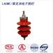 莱克米667103电子围栏标准避雷器