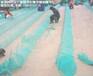 湖南渔网,地笼网,鱼虾蟹捕捞地笼网生产厂