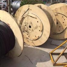 供应OPGW光缆OPGW-24B1-50电力光缆