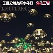 城市街道亮化LED光纤水母灯公园灯光节花海步行街亮化工程