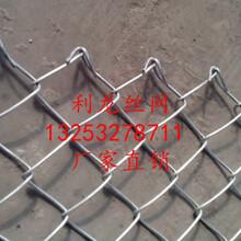 利龙绿化铁丝勾花网边坡绿化客土喷播挂网勾花网价格实惠