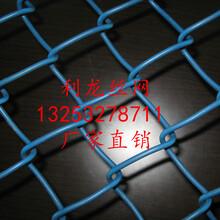 利龙绿化铁丝勾花网边坡绿化客土喷播挂网勾花网量大从优