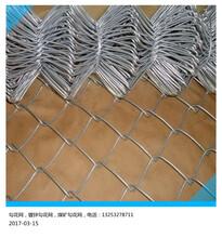 利龙绿化铁丝勾花网边坡绿化客土喷播挂网服务周到