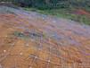 勾花网边坡防护网绿化客土喷播挂网绿化勾挂网服务周到