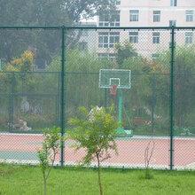 勾花网球场围栏网绿化勾挂网篮球场勾花网优质服务