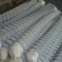 客土喷播挂网镀锌勾花网绿化勾挂网边坡复绿铁丝网优质服务
