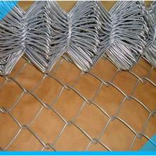 镀锌勾花网绿化勾挂网边坡复绿铁丝网优质服务
