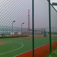 利龙镀锌铁丝勾花网强度边坡绿化客土喷播挂网量大从优