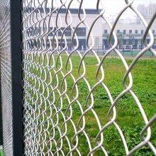 勾花网镀锌勾花网绿化勾花网绿化勾挂网价格实惠