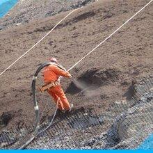 勾花网镀锌勾花网绿化勾花网边坡喷播铁丝网安全可靠