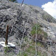 勾花网镀锌勾花网绿化勾花网边坡喷播铁丝网行业领先