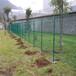 厂家直销大连养殖铁丝网护栏,大连养鸡养殖铁丝网厂家
