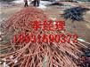 葫芦岛电缆回收今日价格,绥中废旧电缆回收厂家