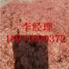 鄂尔多斯废铜废电缆回收价格