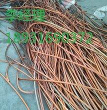 蠡县旧电缆回收商,蠡县废电缆回收站图片