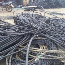 长青县聚乙通信电缆回收公司
