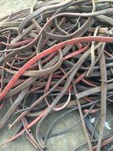 山东电缆回收厂家