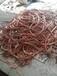東營二手電纜回收東營庫存電纜回收