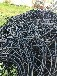 滁州二手電纜回收多少錢一米-詳詢飛鴻銅業