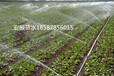 全州荔浦平乐永福恭城滴灌喷灌节水灌溉水肥一体化技术