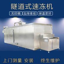 100kg隧道式速凍機湯圓連續式速凍機圖片