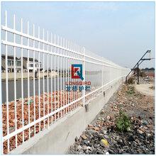 溧水学校围墙护栏溧水学校围墙栏杆镀锌烤漆拼装式龙桥生产图片