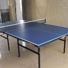 惠州乒乓球台工厂,江门双鱼乒乓球台代理,湘潭乒乓球台批发图片