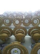 led防爆燈50w/LED防爆油站燈/加氣站防爆油站/led防爆棚頂燈圖片