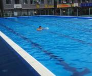 郑州卧龙新型拆装式游泳池图片