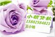 长沙正规小额贷款公司,急用钱,身份证快借!