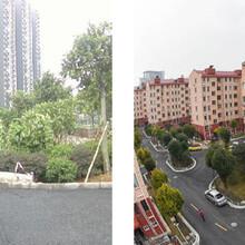 郑州管城区沥青改彩色罩面哪家专业?图片
