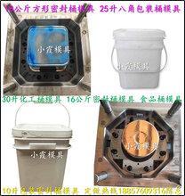 注射模具厂,塑料防冻液桶八角模具,塑料包装桶八角模具,塑料食品桶八角模具图片