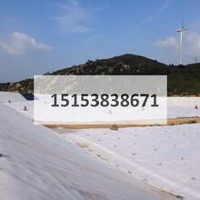 土工布滨州国家标准/土工织物山东生产厂家/短纤土工布滨州质量保证图片